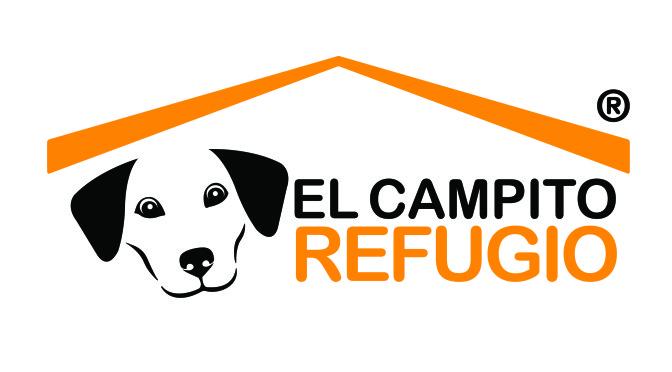 RSE de Fiat Argentina celebrando el Día del Amigo con el refugio El Campito