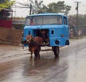 cabllo_tira_de_un_camion