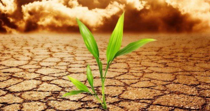 CNH Industrial | líder mundial contra el cambio climático