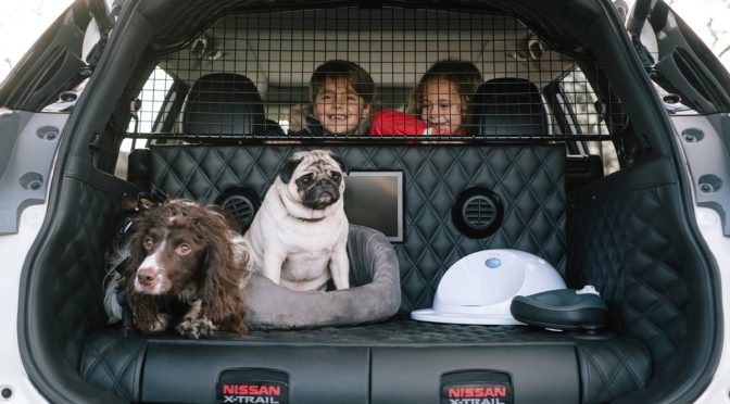 X-Trail 4Dogs   Nissan   perfecto para las aventuras familiares