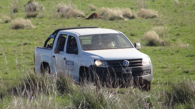 Volkswagen | RSE | ayuda a conservar el Parque Nacional Ibera
